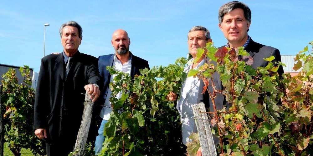 Pierre, George, Sébastien et Lionel DUPRAT - Pays Basque Excellence
